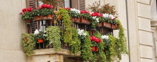 Comment fleurir son balcon en ville ?