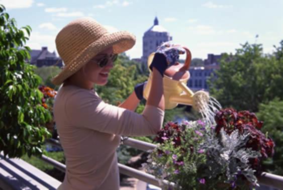 fleurir-balcon