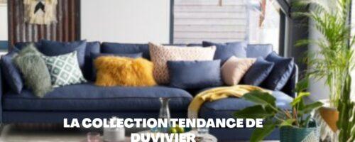 Se procurer un canapé en cuir dernière tendance chez Duvivier