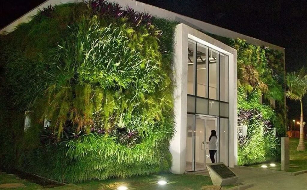 jardin en mur végétal