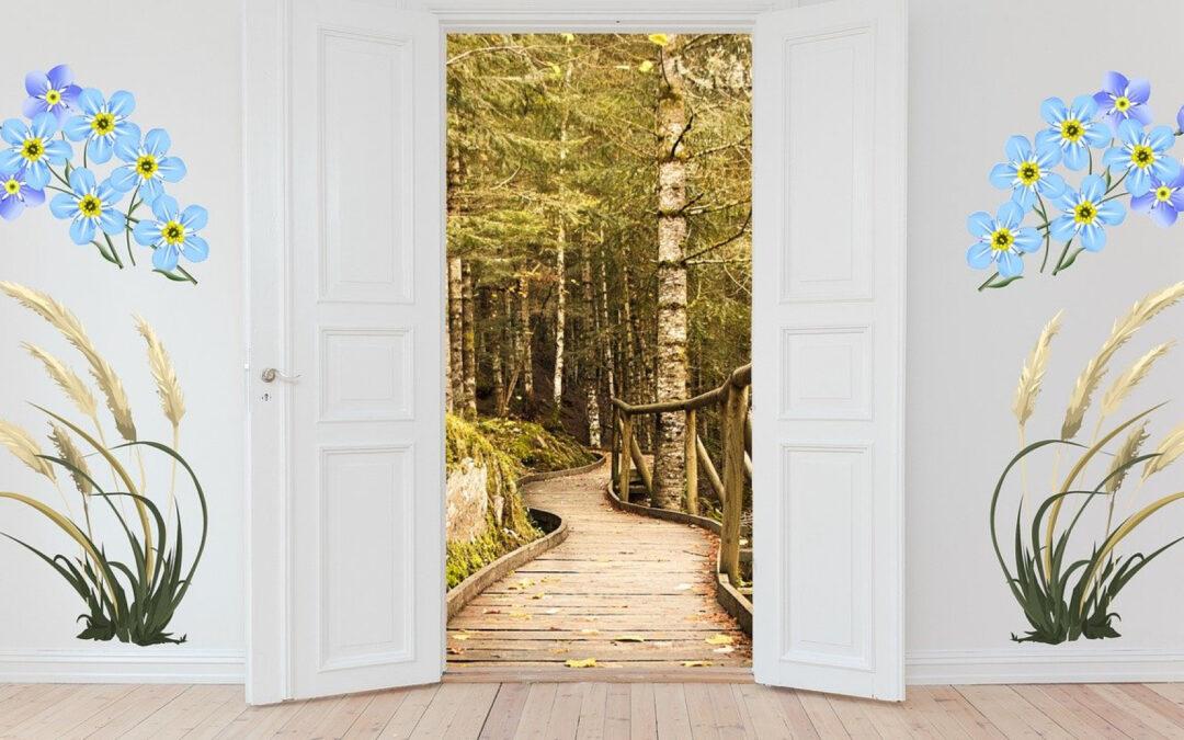 Comment renforcer la sécurité de votre porte d'entrée ?