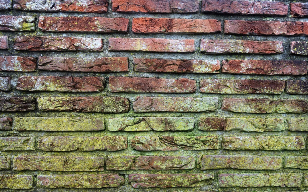 Traitement hydrofuge pour la protection des façades