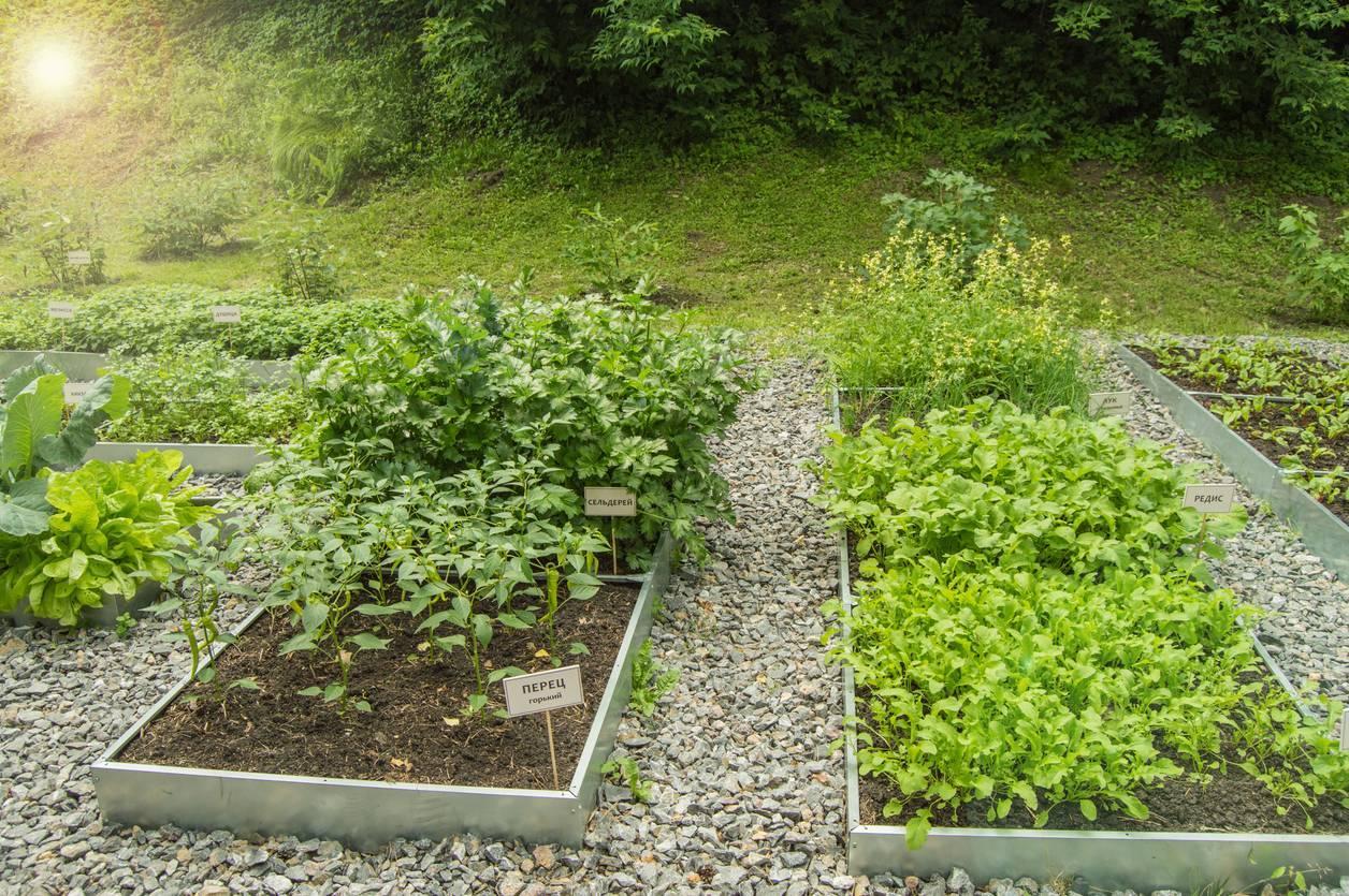 bordure accotement jardin acier corten